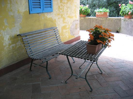 Fattoria Bassetto: The Villa (private accomodations) has a beautiful terrace with tables, chairs, trees, flowers an