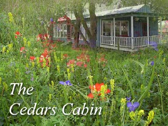 Cedars Cabins: Cedars Cabin