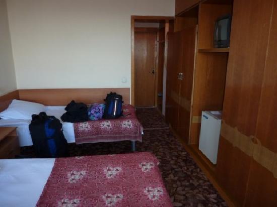 Hotel Vladikavkaz: The room
