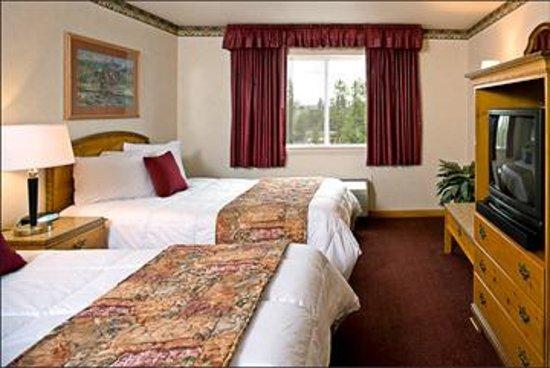 灰狼套房酒店照片
