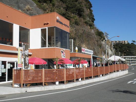 Zushi Beach Road Oasis