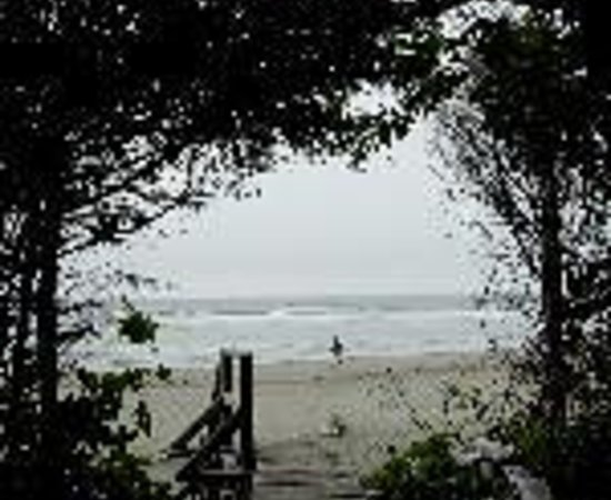 Wild Pacific Bed and Breakfast Thumbnail