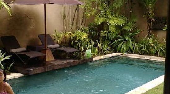 Villa Air Bali Boutique Resort & Spa: プール