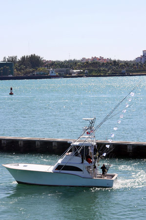 Deep sea fishing Miami - Jumanji: Miami Fishing Charter Boat - Jumanji