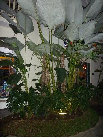 Cihampelas Hotel 2: rumah mode