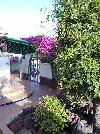 Bungalows Parque Sol: FLOWERS