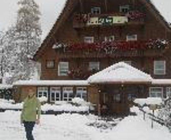 Adler Bärental: Adler Baerental Thumbnail