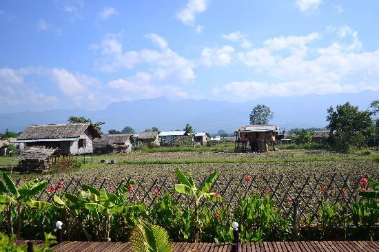 Princess Garden Hotel: rural view
