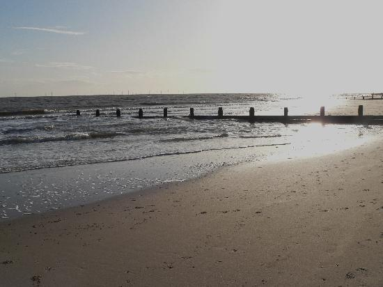 Cafe 19: Local beach