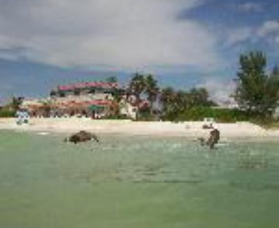 Seaside Beach Resort: Seaside Inn and Resort Thumbnail