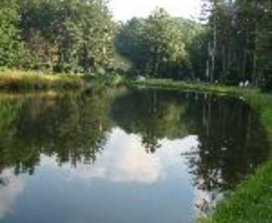 Montebello Camping and Fishing Resort Thumbnail