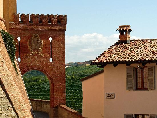 Sogni e Tulipani Bed & Breakfast: Barolo et son vin