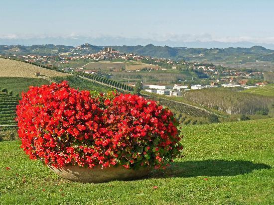Sogni e Tulipani Bed & Breakfast: Depuis Grinzane Cavour