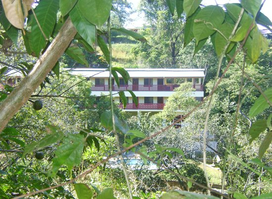 Bosque Zuma Lodge: IN THE NATURE