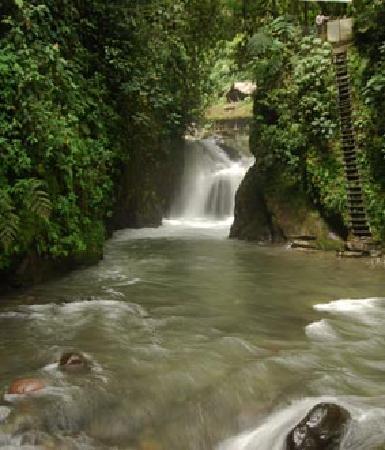 ميندو جاردن لودج: Get Nambillo water fall from Mindo Garden