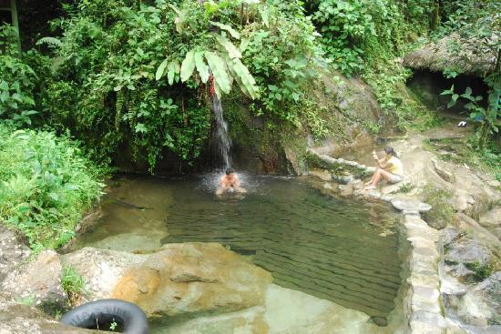 Mindo Garden: Nambillo, Mindo Ecuador