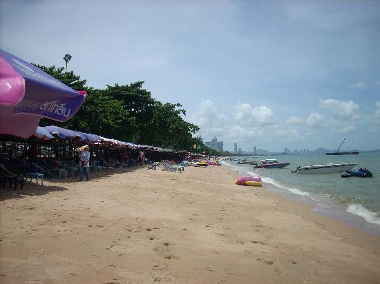 Stefan's Guesthouse: The Beach