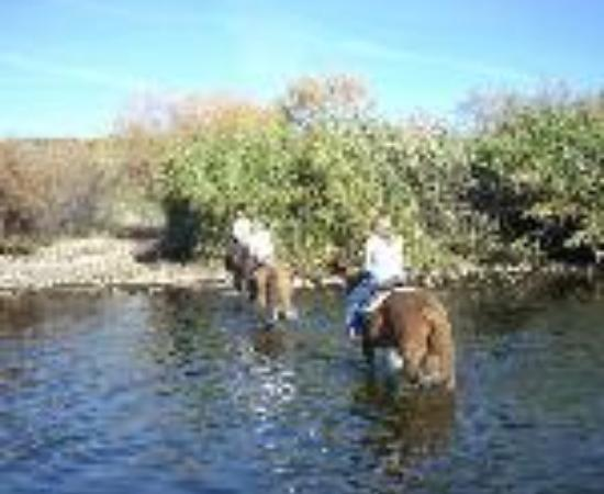 Saguaro Lake Guest Ranch: Saguaro Lake Ranch Thumbnail