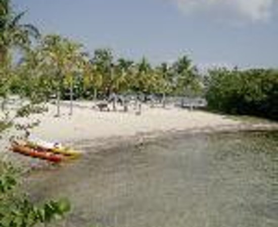 John Pennekamp Coral Reef State Park Campgrounds Thumbnail