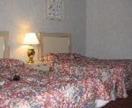 Econo Lodge Sturbridge: Motel 6 Thumbnail