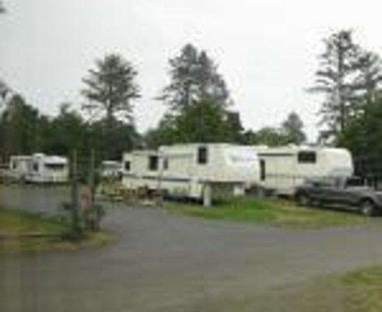 Pacific Motel Amp Rv Park Westport Wa Omd 246 Men Tripadvisor