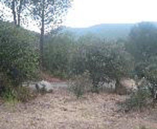 Wheeler Gorge Campground Thumbnail