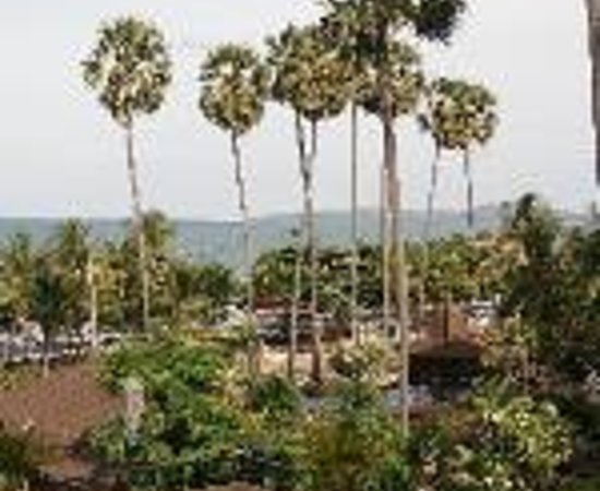 The New Eurostar Jomtien Beach Hotel & Spa: EuroStar Jomtien Beach Hotel Thumbnail