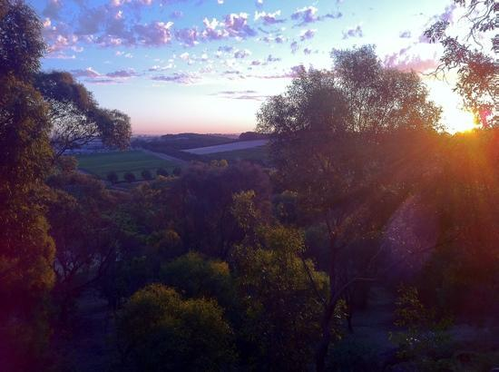 Treetops Bed and Breakfast: view of sunset from verandah