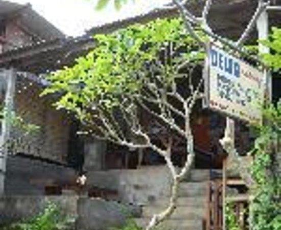 Citrus Tree Villas - Shana: Shana Bungalows Thumbnail