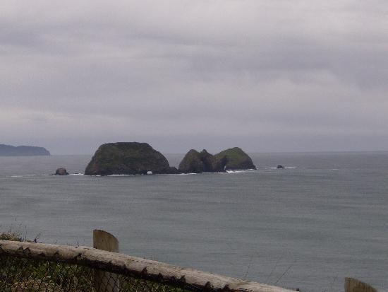 Depoe Bay, OR: great view
