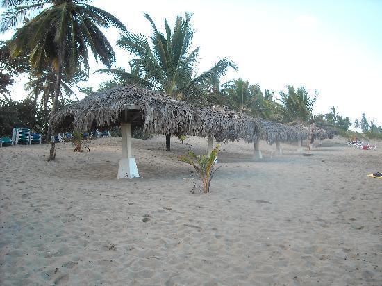 Hotel Celuisma Cabarete: Private beach