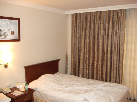 TAV Airport Hotel: Room