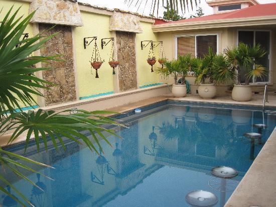 Cascadas de Merida: Pool next to the hammocks