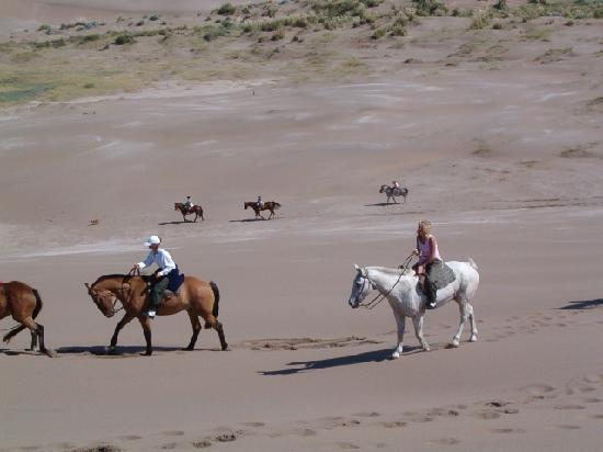 Tres Arroyos, Argentina: Cabalgata en la playa