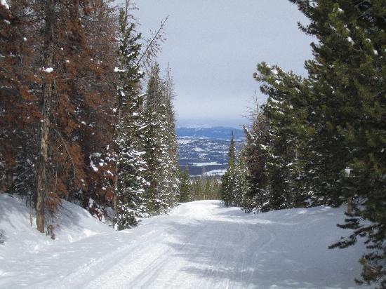 Trailblazer Snowmobile Tours: Great view