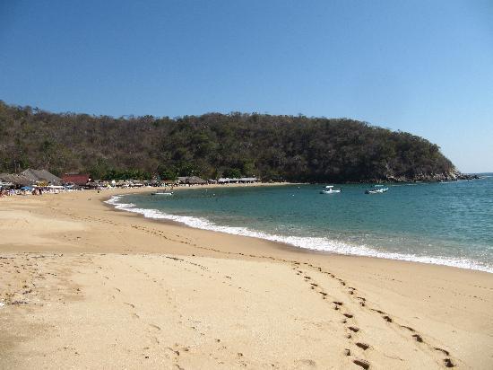 Flamboyant Huatulco: Chahue beach