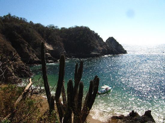 Azul Sirena Huatulco: Violin beach near Entrega beach