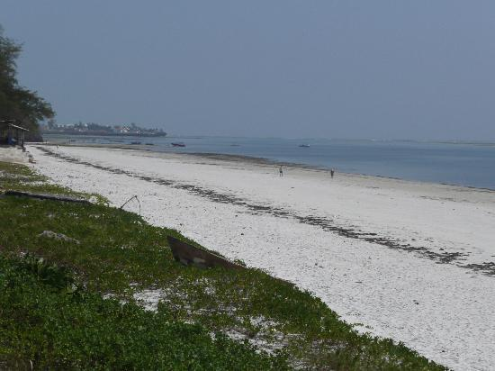 Nyali Beach: A view of the beach.