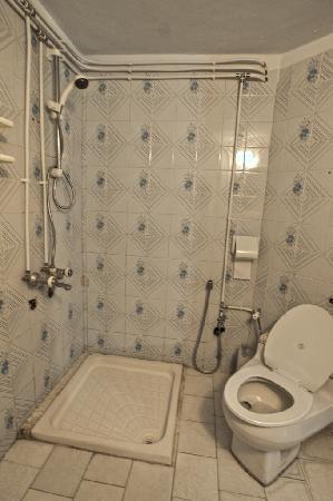 Bozorg-e-Noor Hotel: Bozorg-e-Noor: bathroom