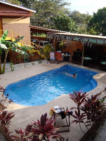 Samara Palm Lodge: The swimmingpool, good to relax after the beach