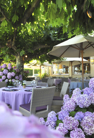 Hotel Mediterranee : la terrasse