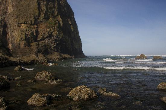 Inn at Haystack Rock: Beach
