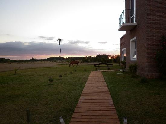 Miradores de Laguna Garzon: Vida de campo