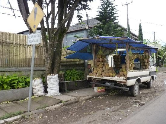Bandung, Indonesien: Durian for sale