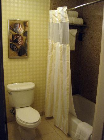 Hilton Garden Inn San Diego Del Mar: Shower/Restroom