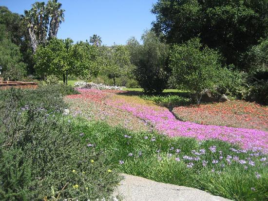 Rancho La Puerta Spa: gardens