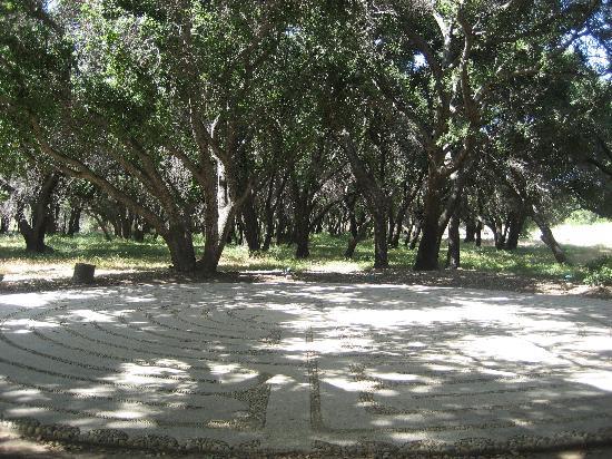 Rancho La Puerta Spa: labyrinth under the oak grove