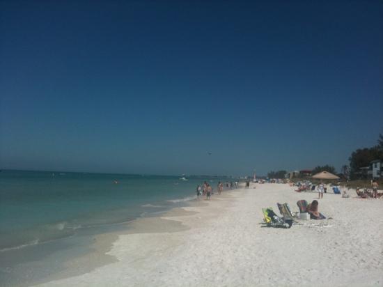 Anna Maria Island, FL: super beach! Holmes Beach