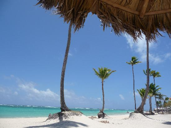 Iberostar Grand Hotel Bavaro: Beach right on the property!