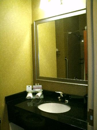 Holiday Inn Express Hotel & Suites Waukegan: Bathroom